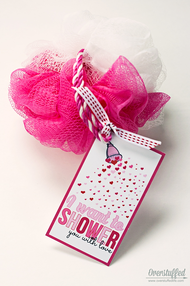 "I Want to ""Shower"" You With Love Valentine's Day Printable"